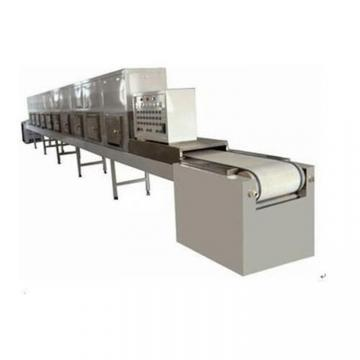 Food Conveyor Mesh Belt Dryer Machiery Fruit Vegetable Drying Machine